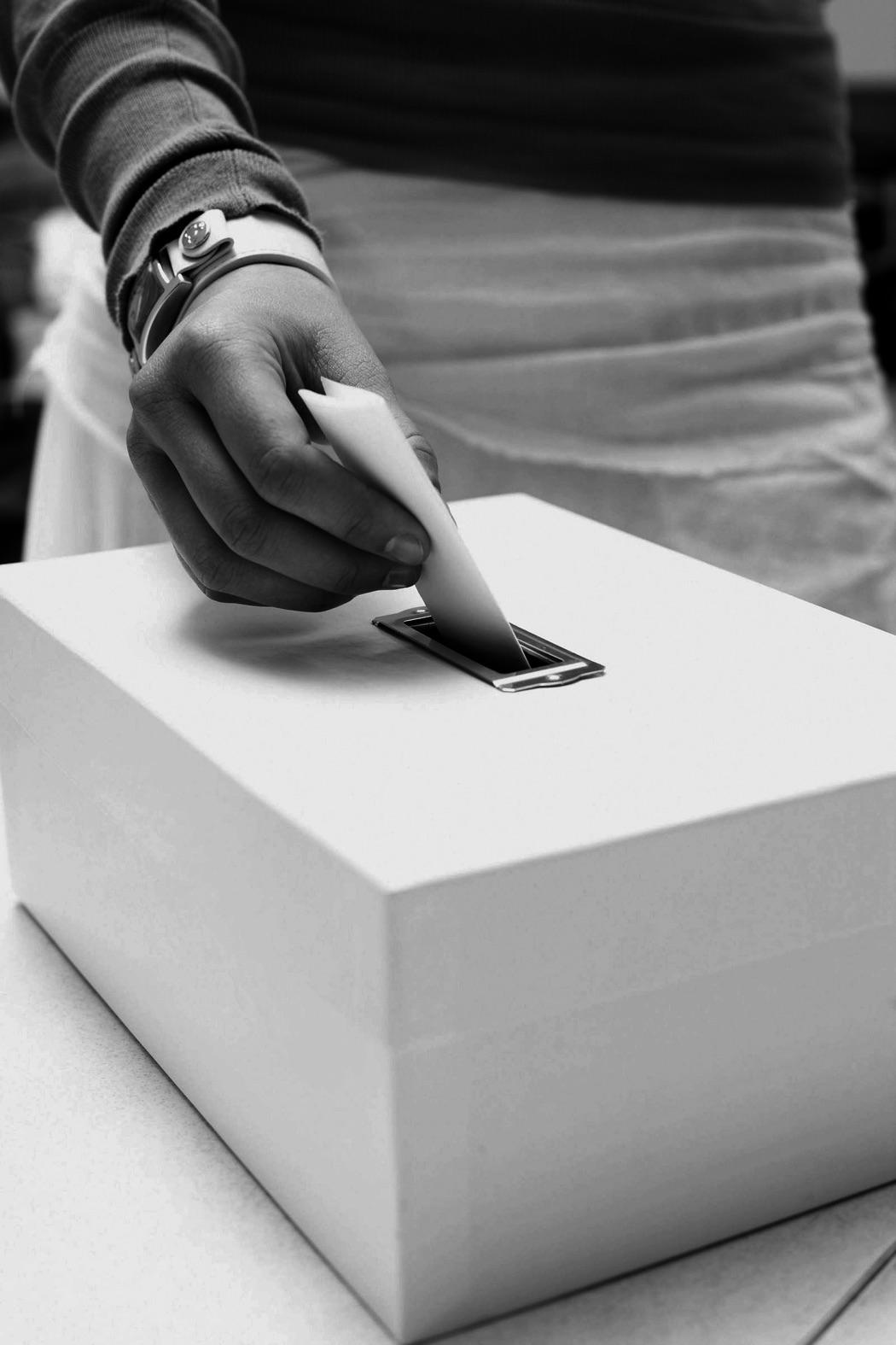 vote kuzz